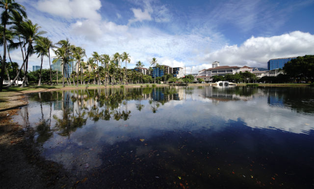 Ala Moana Beach park pond with Neiman Marcus and Ala Moana Center in rear of photo.