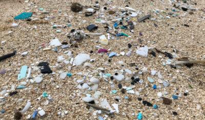 Council Passes Landmark Bill Restricting Single-Use Plastics On Oahu