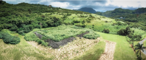 Denby Fawcett: Rescuing A 12th Century Heiau From A Garbage Dump
