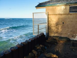 Denby Fawcett: City Blocks Public Access Along Diamond Head Seawall