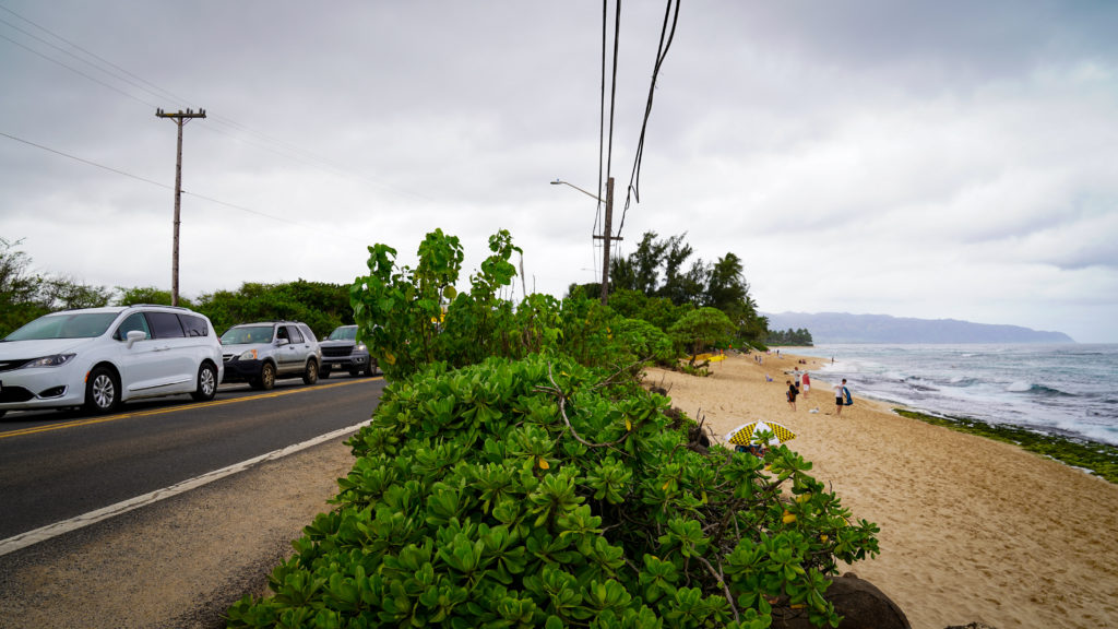 Laniakea Beach Kamehameha Highway North Shore