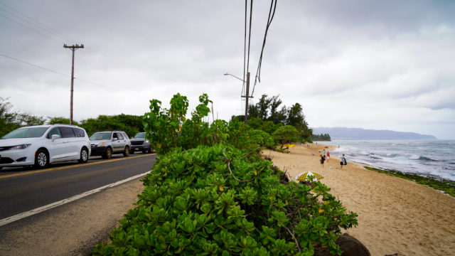 Laniakea Beach Kamehameha Highway North Shore