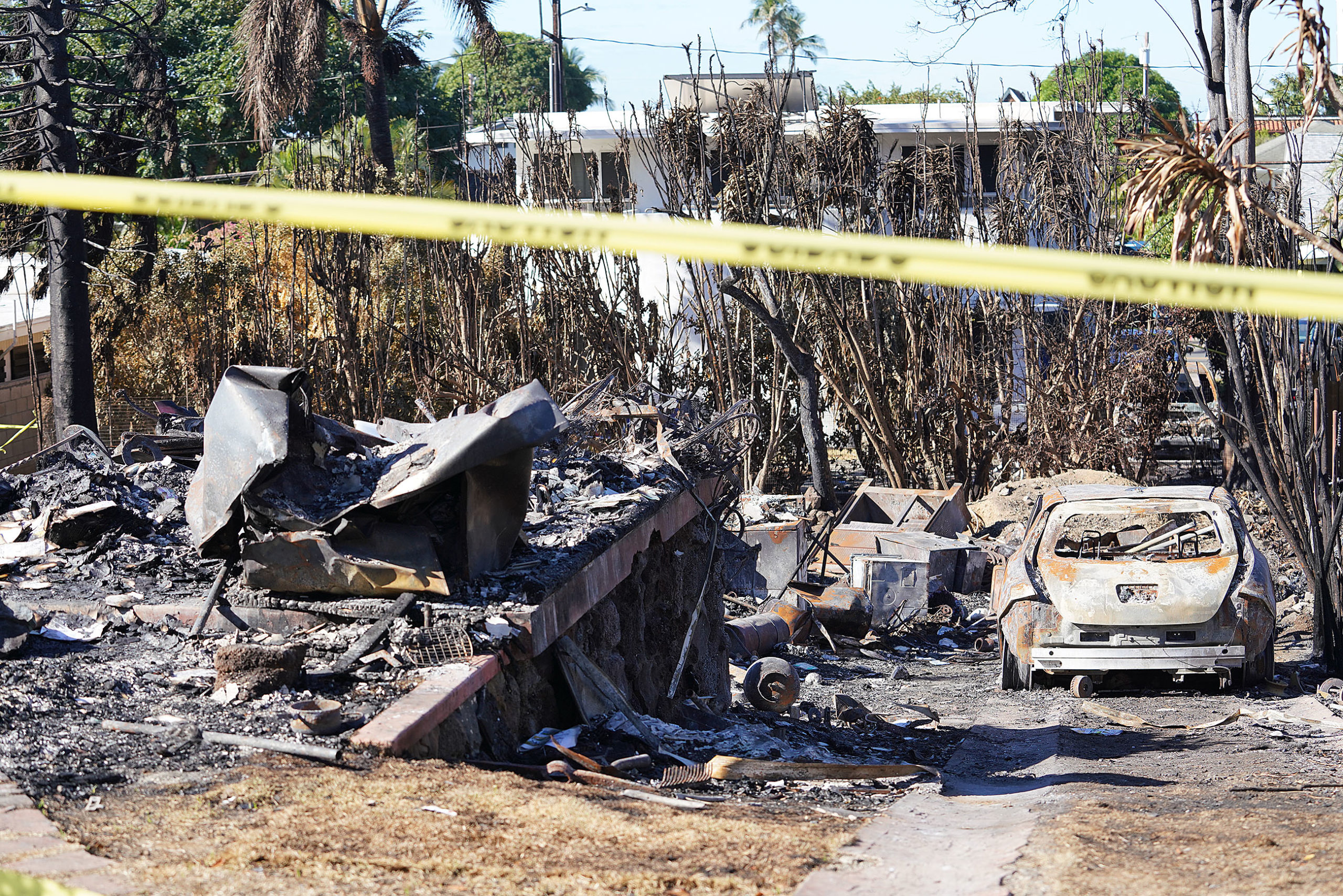 <p>Several homes and cars were destroyed in the Hibiscus Drive incident. The suspect's landlord, Lois Cain, was also killed. She had let him live there for free for years but was going through eviction proceedings at the time.</p>