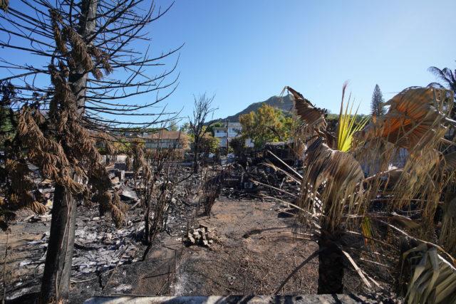 Hibiscus Drive fire damage looking towards Diamond Head.