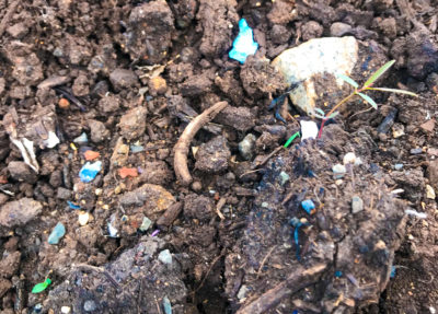 How Is Plastic Getting Into Hawaii's Soil?