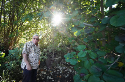 This Oahu Developer Is Planting A Native Hawaiian Forest