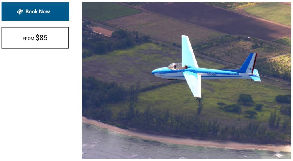 Glider Gliders