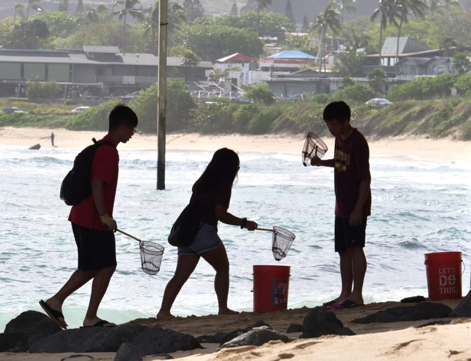 Youth volunteers collect trash from the beach around the Waimanalo Pier as part of a volunteer group with 808 Cleanups in Waimanalo, HI, on Saturday, March 8, 2020.  The 808 Cleanups non-porfit group organizes weekly cleanups from mauka to makai all over Oahu.  (Ronen Zilberman photo Civil Beat)