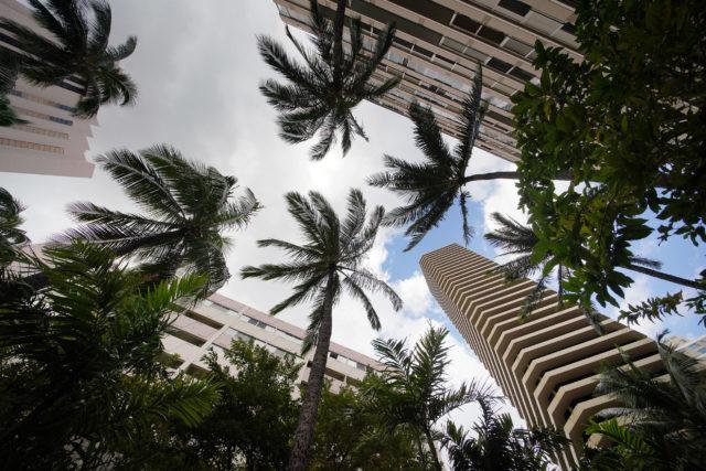 Waikiki Marina located at 1700 Ala Moana Boulevard.