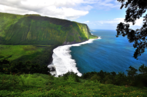 A Call For Resiliency And Sustainability On The Big Island