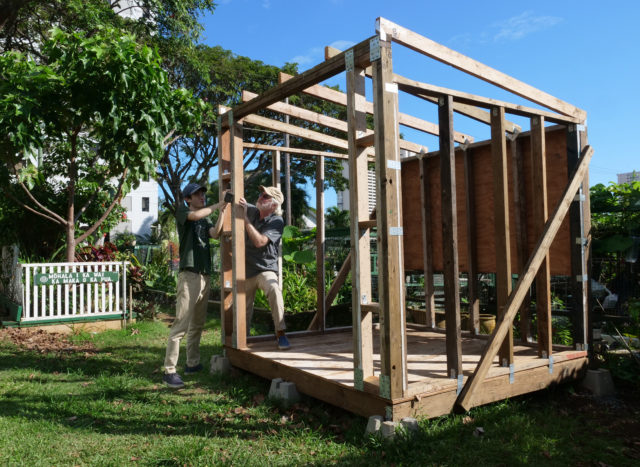 John (right) and his son Kai work together to build a tool shed as part of a project for Kai's Eagle Scouts program, at the Makiki Park Community Garden, on Thursday, April 9, 2020 in Honolulu, HI. (Ronen Zilberman photo Civil Beat)