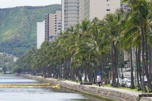 Hawaii's COVID-19 Death Toll Reaches 12
