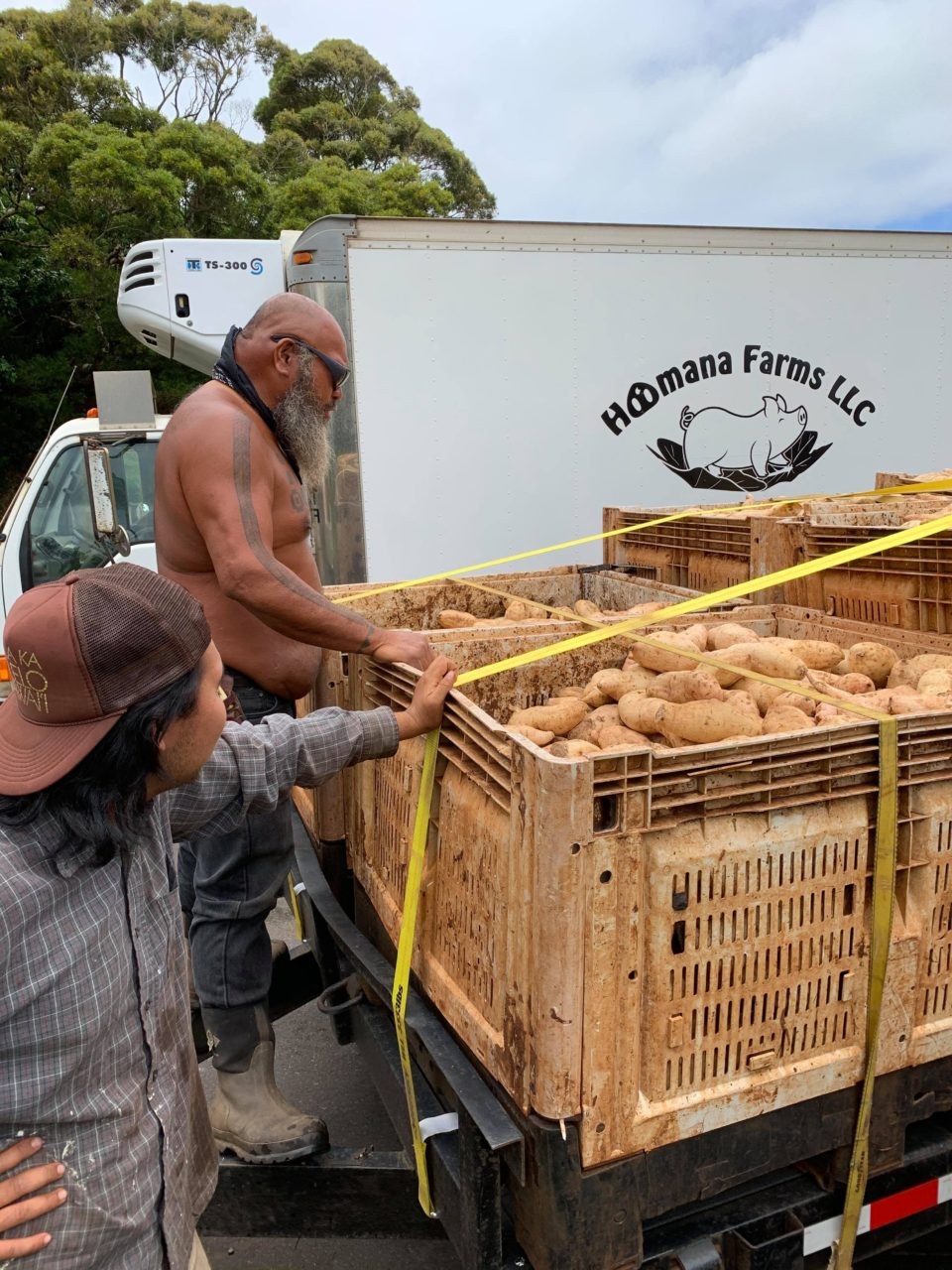 Maui Best Incorporation and Ho'omana Farms LLC sponsored the Ho'omana project where twelve tons of sweet potato was distributed to the public. Below is a link of photos and videos taken by Senator J. Kalani English throughout the distribu