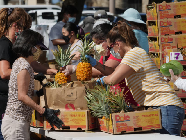 Volunteers pack pineapples into bags to be loaded into cars at the big food distribution event held at Aloha Stadium in Honolulu, HI, Wednesday, May 6, 2020. The city of Honolulu, Hawaii Foodbank, and Hawaii Community Foundation collaborated to put on the event providing food for approximately 4,000 Oahu households. (Ronen Zilberman photo Civil Beat)