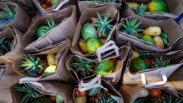Food Bank Distribution Leeward Community College Coronavirus Fruits Produce