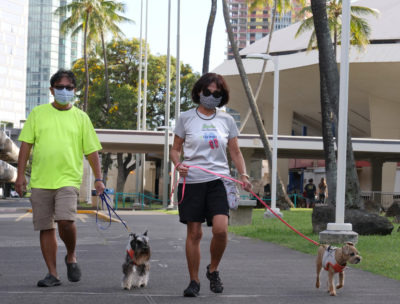 Troy and Miyo Villar keep to CDC guidelines by wearing facemasks while out walking their dogs near the Blaisdell Center in Honolulu, HI, Saturday, April 25, 2020. (Ronen Zilberman photo Civil Beat)