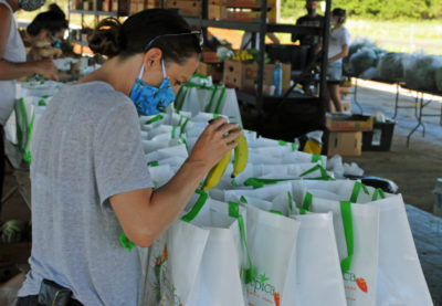 USDA Grant Throws A Lifeline To Kauai Farmers Hit By Pandemic
