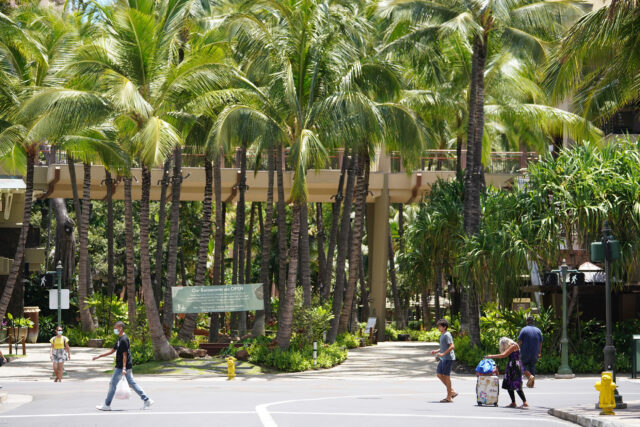 Backdrop of coconut trees at Royal Hawaiian Shopping Center, looking makai on Seaside Avenue, very little foot traffic in Waikiki during COVID-19 pandemic. June 17, 2020