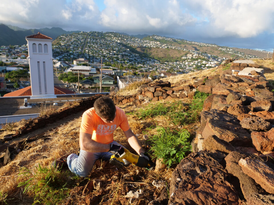 Michael Loftin from 808 Cleanup cuts out invasive tree stumps from a retaining wall on the hillside of Pu'u O Kaimuki Mini Park (Christmas Tree Park) on Monday, June 22, 2020. The non-profit organizes volunteers in beach clean-ups and projects like this around the island on a monthly basis. (Ronen Zilberman photo Civil Beat)