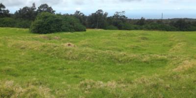 How Landscape Legacies Enhance Hawaii Agriculture