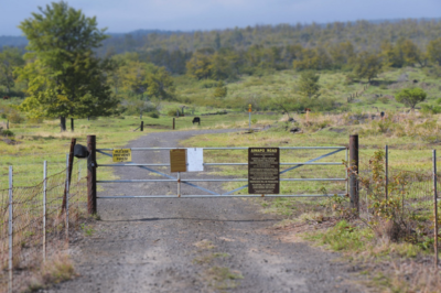 We Can Have It All: Ag, Public Access And Forest Protection