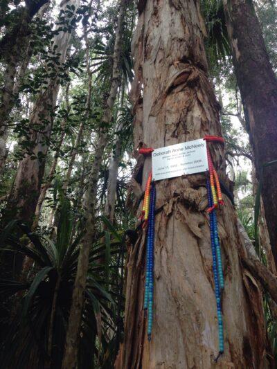 Deborah Anne McNeeley, Maggie Messitt, Missing Person, Suicide, Maui