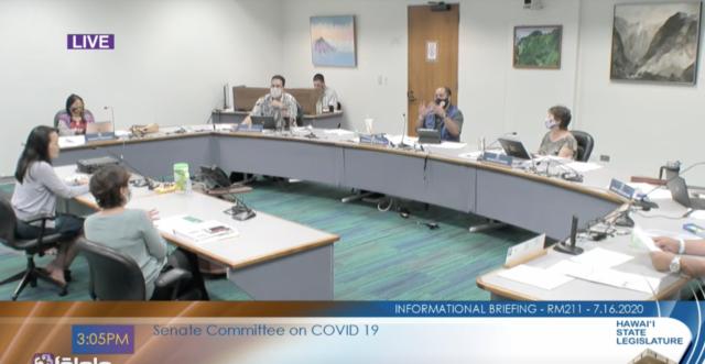 Kishimoto, Sarah Park, DOE, DOH, Senate Covid committee, Legislature