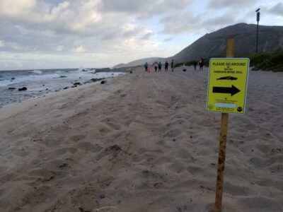 New Boulder Barriers Aim To Protect Monk Seals From Illegal Off-Roading