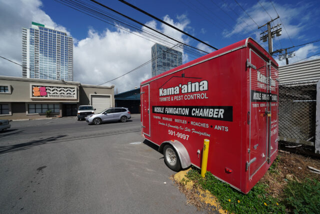 Kamaaina Termite and Pest Control trailer. Founder Michael Miske near 940 Queen street.