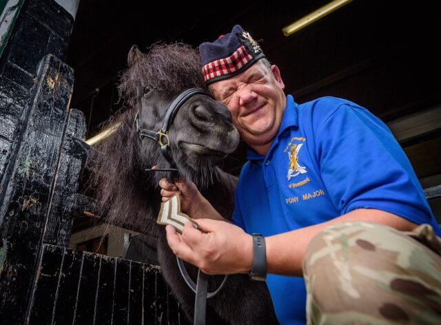 Pictured is The Royal Regiment of Scotland's only four-hooved Lance Corporal, after earning his second stripe! ..Scotland's most famous Shetland Pony, the Royal Regiment of Scotland's mascot, Lance Corporal Cruachan IV, can now add another stripe to his ceremonial uniform. He's been promoted to Corporal! Cruachan, 9, is based at Edinburgh's Redford Barracks and has been the official Mascot of the regiment since his current stablemate and companion, Cruachan 3rd retired in September 2012 after more than 20 years in the role. ..His handler, Pony Major Mark Wilkinson, has been with him since then and has trained him in the drill and etiquette skills required for his high-profile ceremonial role. Since taking on the job, Cruachan and Mark have led countless parades and attended hundreds of regimental events all over the world, including many in the presence of Her Majesty The Queen and other members of the Royal Family. ..They have also appeared in front of hundreds of thousands of audience members at t