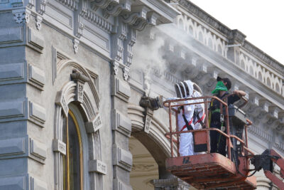 Denby Fawcett: Iolani Palace Is Getting Rid Of Thousands Of Bees