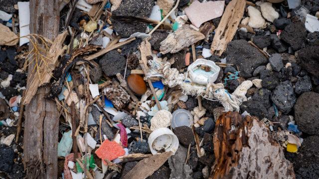 Kamilo Beach Microplastics Caps Debri
