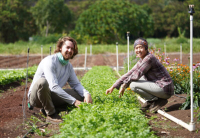 PODCAST: This Kauai Nonprofit Has A Plan For Creating More Demand For Local Food