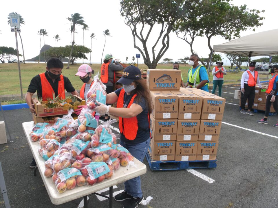 Volunteers sort through produce to create food boxes for a free distribution event by the Hawai'i Foodbank at the Kualoa Park on the Windward side of Oahu, Wednesday, Sept. 23, 2020. (Ronen Zilberman photo Civil Beat)