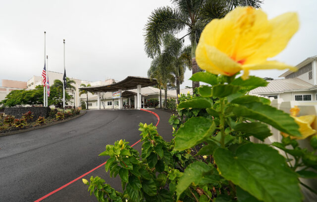 Hibiscus flowers grow near the entrance of the Yukio Okutsu Veterans Home located on the island of Hawaii. Scores of residents of the home have been killed by a surge in COVID-19 cases. September 24, 2020