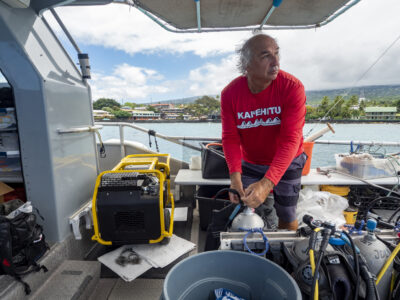 CARES Act Money Is Keeping This Big Island Tour Company Afloat