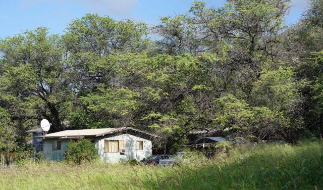Mano Avenue home nestled in Kiawe trees in Nanakuli, Waianae.
