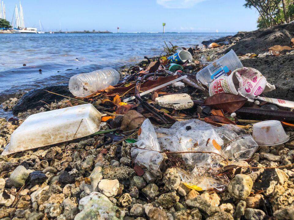 5 Ways We Can Move Away From Single-Use Plastics