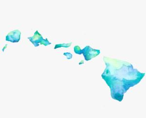 Lee Cataluna: The New Year Brings A New Hawaii