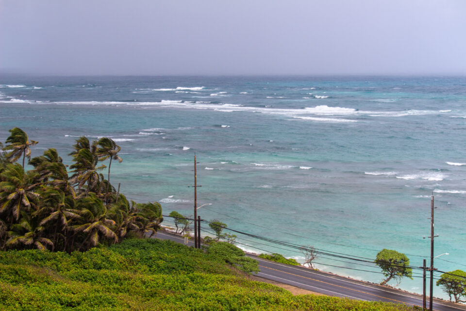 HAWAII VIRUS TRACKER — Jan. 27: 103 New Infections And 3 Deaths
