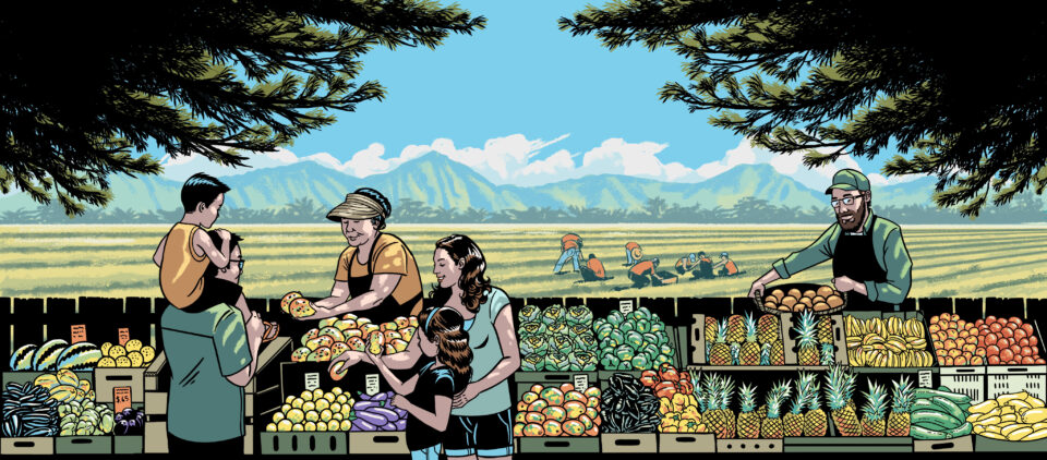 Hawaii's Food System Is Broken. Now Is The Time To Fix It