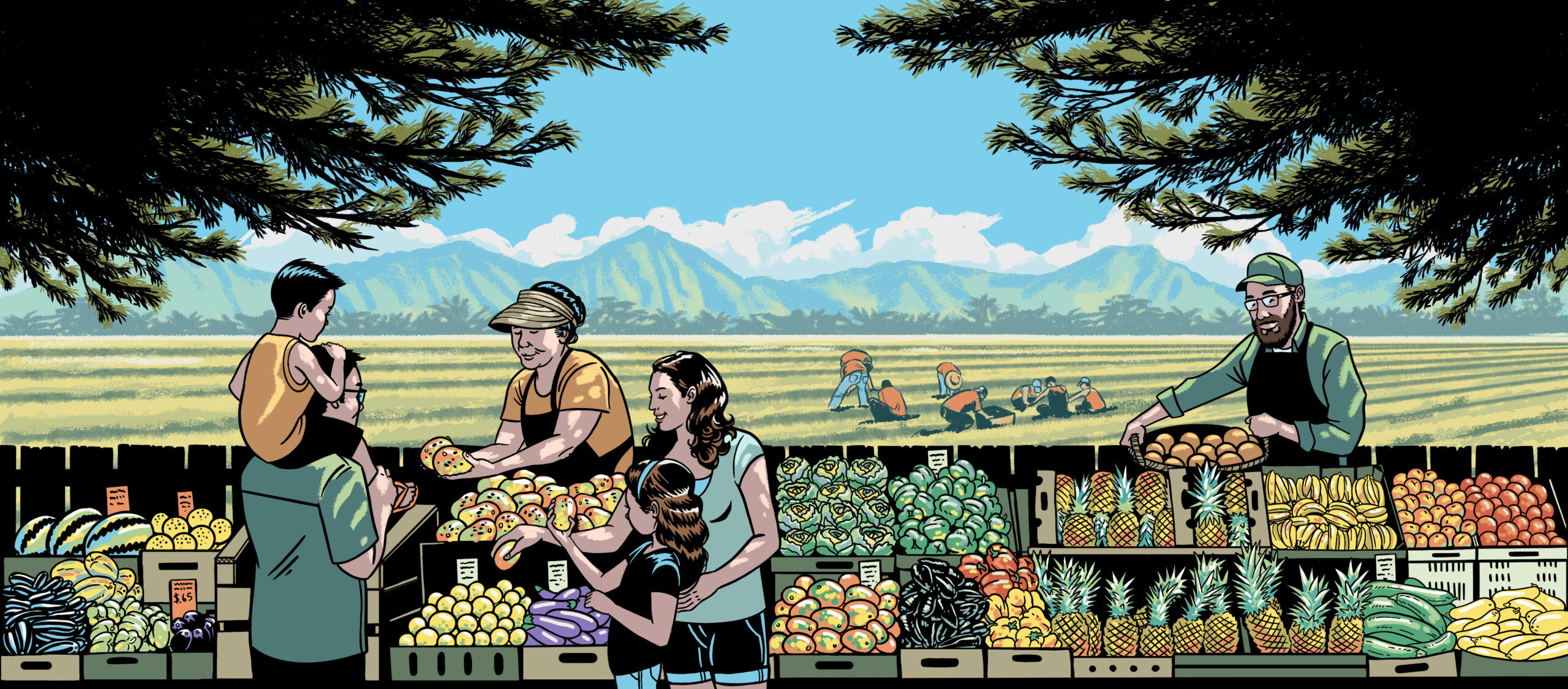 Hawaii's Food System Is Broken. Now Is The Time To Fix It - Honolulu Civil Beat