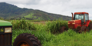 Lawmakers Must Fix The Agribusiness Development Corporation