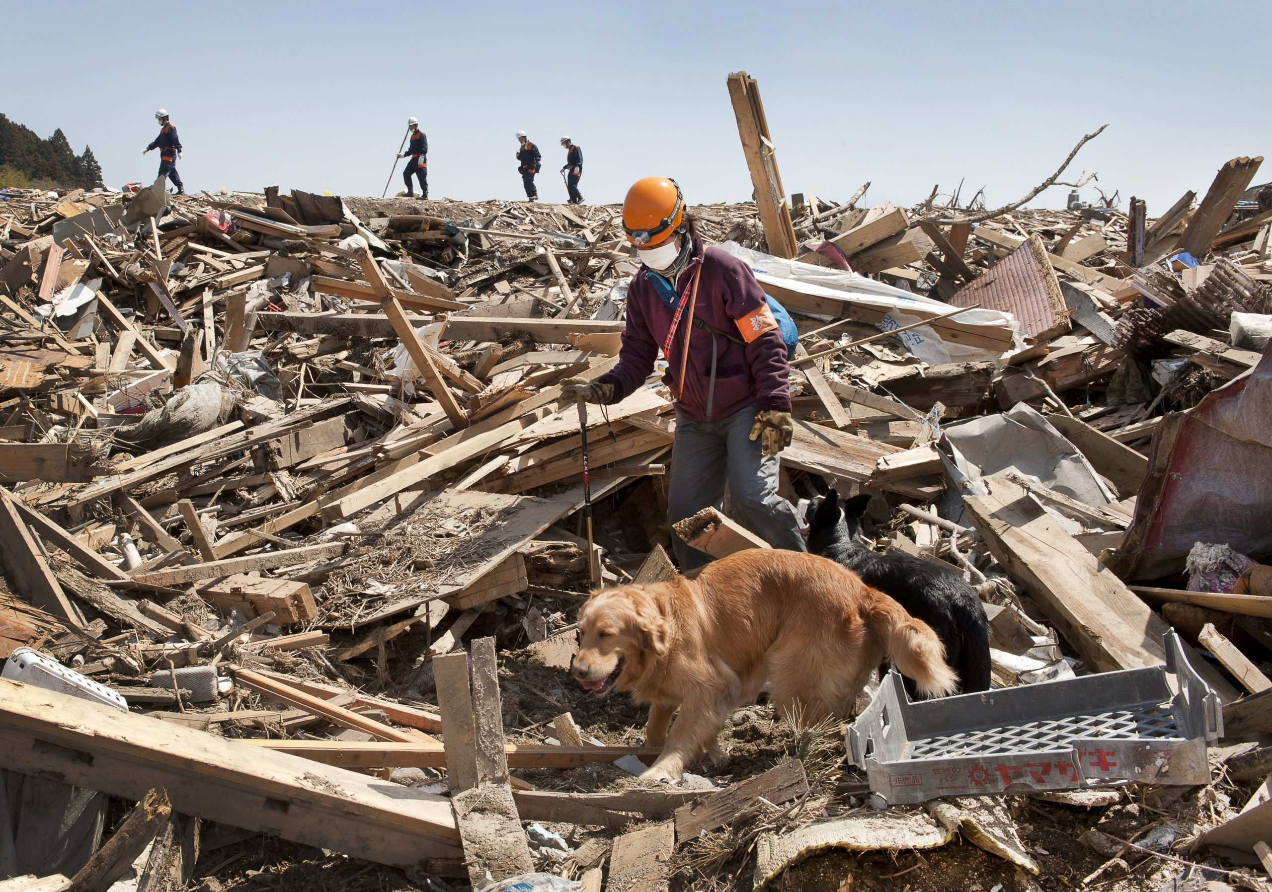 <p>A search team in the tsunami-devastated seaside town of Rikuzentakata. Rescue dog handler Kaori Oshima from Osaka searches the wreckage for bodies.</p>