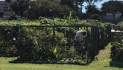 A Community Garden Is A Must-Have For West Oahu