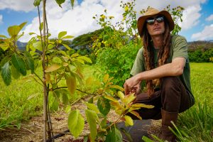 PODCAST: Lessons from Hawaii's Successful Battle With The Avocado Lace Bug