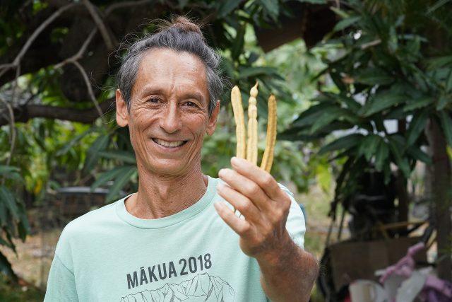 Vince Dodge holds some Kiawe seed pods. The Kiawe seeds are ground to make Waianae Gold, Kiawe seed flour.