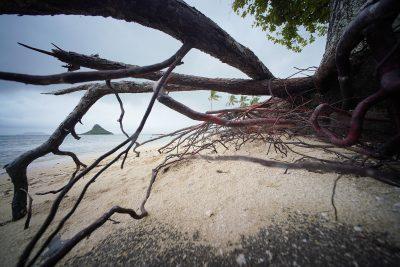 Climate Change Threatens To Worsen Health Disparities In Hawaii