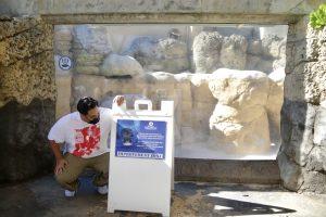 Empty Tanks, Peeling Walls: The Waikiki Aquarium Needs A Makeover
