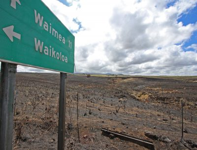 As Climate Change Fuels Fires, A Big Island Community Has Only One Way Out